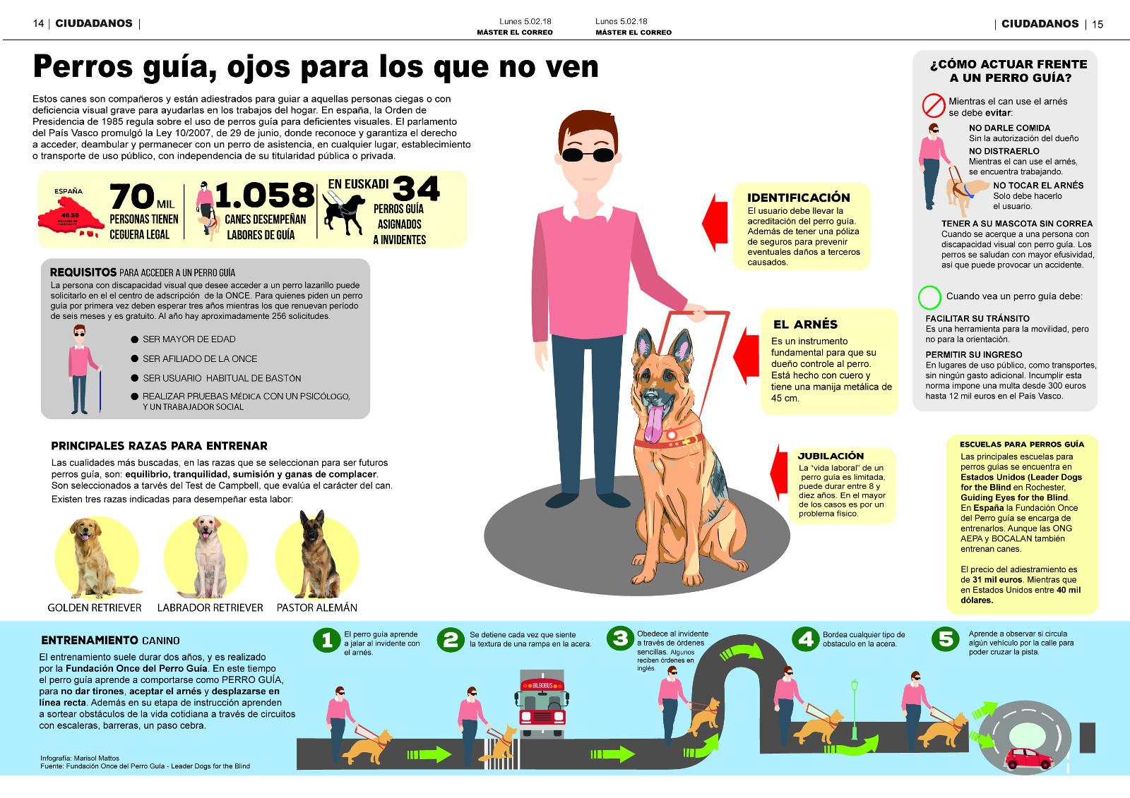 Infografía: Perros lazarillo